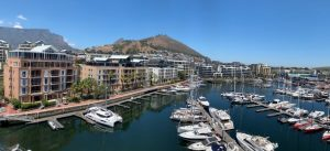 view of dock full of boats and yachts